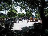 東調布公園プール