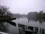 雪の洗足池公園@洗足池